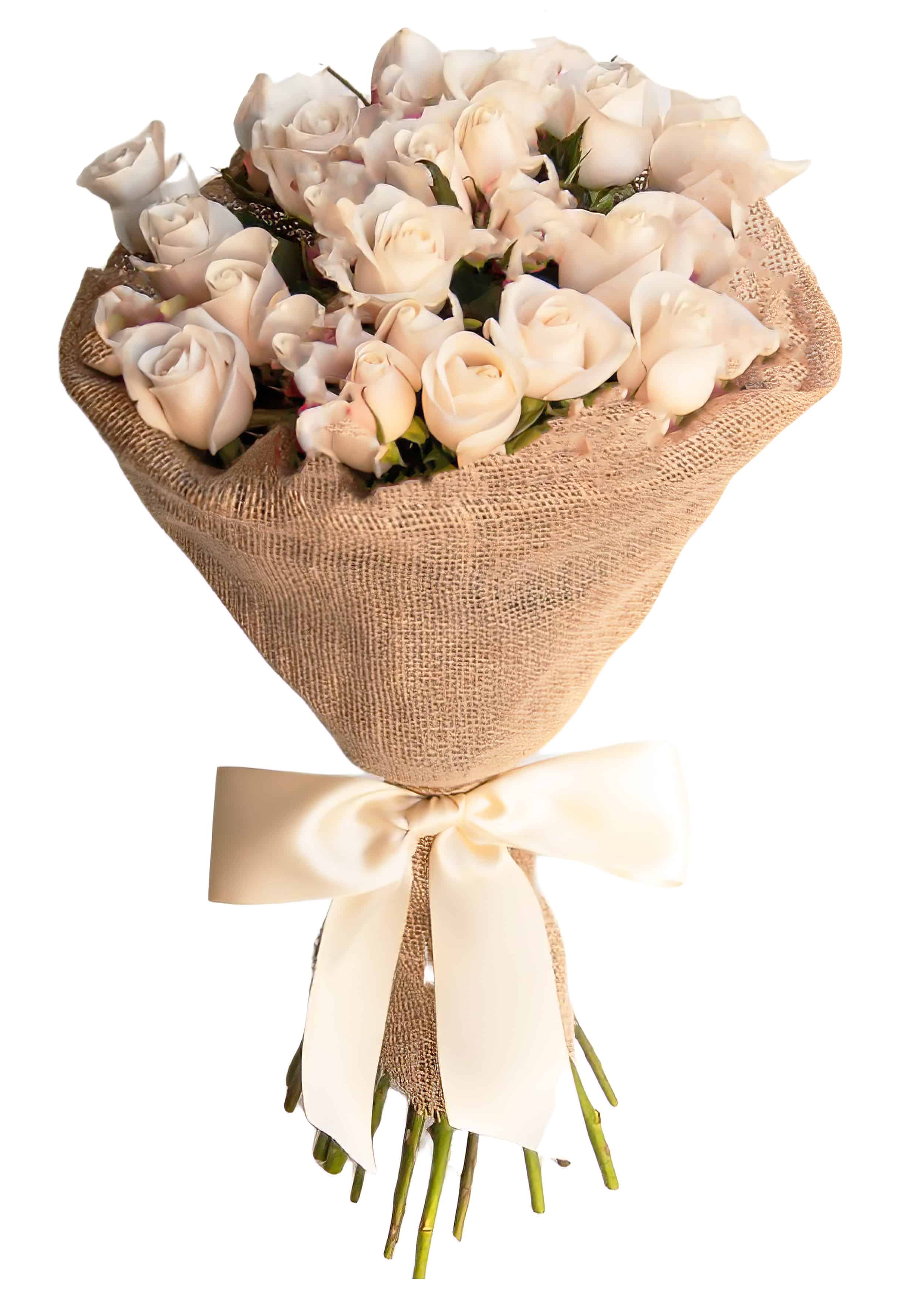 Two Dozen (24) Roses Wrapped | San Francisco Florist Since 1871 Free Bay Area and San Francisco Flower Delivery