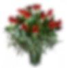 Valentine Famoso 2 Dozen Roses