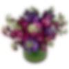 Colorful Matthiola Arrangement