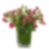 Hearts Ablaze Flower Arrangement