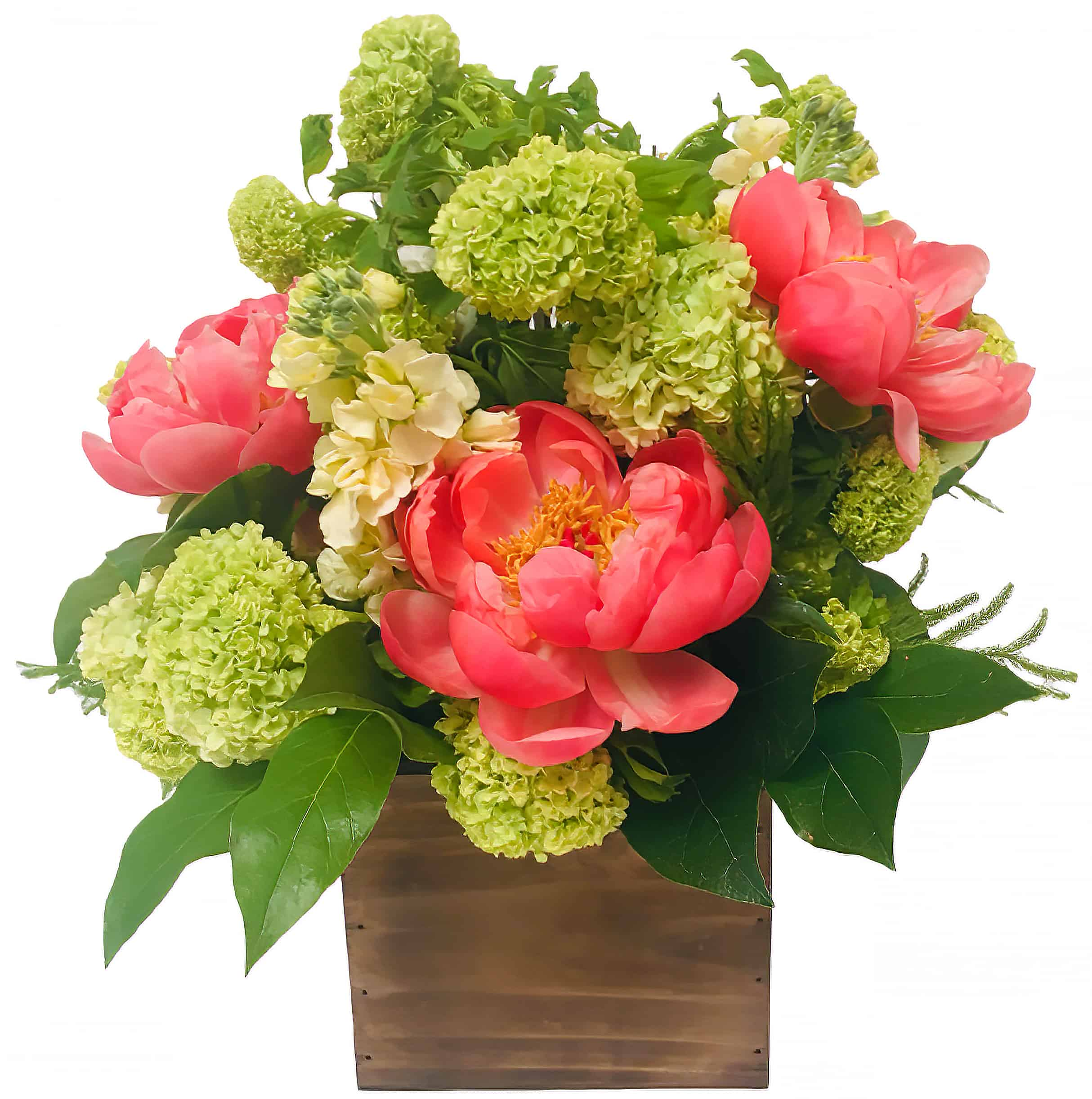 Boxed Peonies Flower Arrangement | San Francisco Florist Since 1871 Free Bay Area and San Francisco Flower Delivery