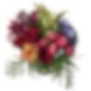 Bird's Plume Flower Arrangement