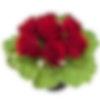 Black Pearl Flower Arrangement