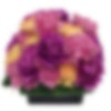 Contemporary Carnation Box Flower Arrangement