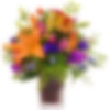Castel Sant'Angelo Flower Arranegement