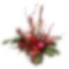 Festive Amaryllis Solitaire Planter