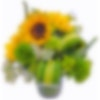 Striped Sunflowers Floral Arrangement