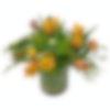 Tulip Francois Flower Arrangement