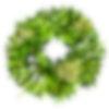Bay Leaf and Eucalyptus Wreath