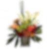 Jungle Stripes Flower Arrangement