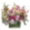 Growing Garden Flower Arrangement
