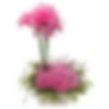 Modern PINK Flower Arrangement