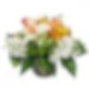 Oriole's Nest Flower Arrangement