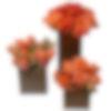Orange Box Trio Flower Arrangement