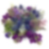Purple Poison Flower Arrangement