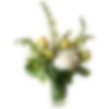 Whistling Whites Flower Arrangement