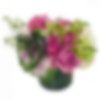 Kale-ifornia Bouquet Flower Arrangement