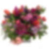 Garden Romance Flower Arrangement