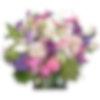 Tropical Princess Flower Arrangement