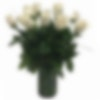 White Rose Arrangement