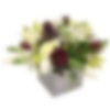 Rosso e Bianco Flower Arrangement